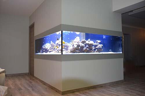 Aquarium fabriqué par Biocorail
